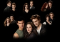 Eclipse Cast Wallpaper - twilight-series photo