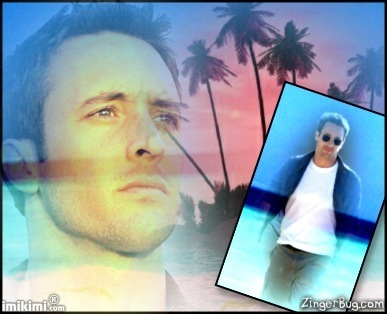 Hawaii Five-O پرستار Art