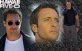 Hawaii Five-O Fan Art - hawaii-five-o fan art