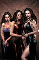 Issue #0 (Al Rio) - charmed-comics photo