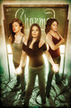 Issue #1 (David Seidman) - charmed-comics photo