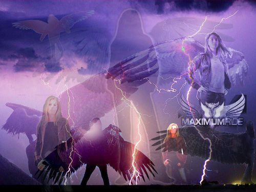 Maximum Ride Hintergrund titled Maximum Ride