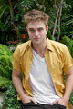 More Portraits From the Eclipse Press Conference  - twilight-series photo