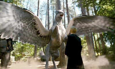 চলচ্চিত্র & TV > Harry Potter & the Prisoner of Azkaban (2004) > Promotional Stills