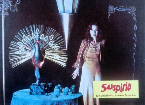 Film horror wallpaper entitled Suspiria
