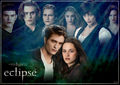 Wallpaper  made by ddbeliever - twilight-series photo