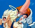 buu vs vegeta  - majin-buu photo