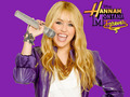 hannah montana forever..........pic by pearl