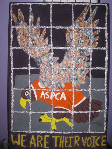 ASPCA eagle