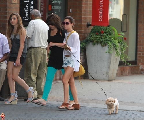 Ashley Walking out her dog Maui in Toronto with mga kaibigan June 19th,2010