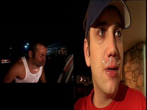 Bloodhound Gang wallpaper titled BHG on Viva La Bam:  Scavenger Hunt
