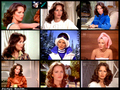 Charlie's Angels TV - charlies-angels-1976 wallpaper
