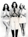 Charlie's Angels TV