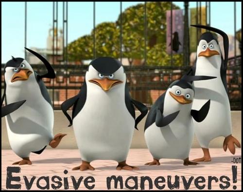Evasive Manuvers!