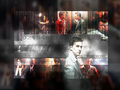 Fight Club - fight-club wallpaper