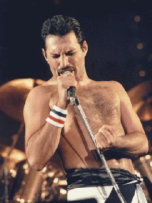 Freddie♥