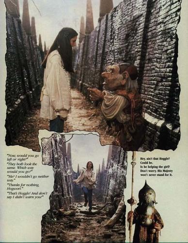 Labyrinth фото Album