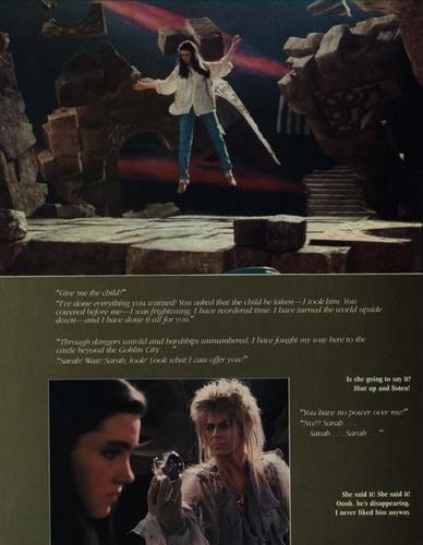 Labyrinth foto Album