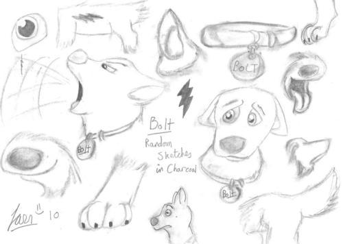 مزید of my Bootiful Bolt پرستار Art