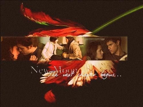 Twilight Saga Wallpapers. x