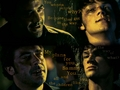 YED John and Sammy - demons-of-supernatural wallpaper