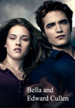 Bella and Edward - the-cullens-werewolves-vsvolturi photo