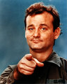 Bill Murray - bill-murray photo