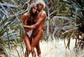 Blue Lagoon - brooke-shields photo