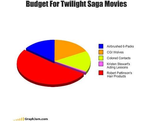 Budget for Twilight Saga sinema