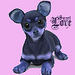 Cute Chihuahua - dogs icon