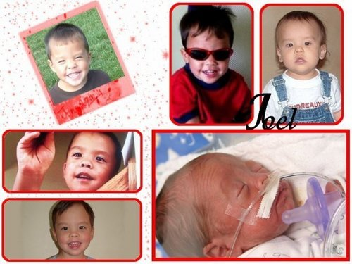 Jon & Kate Plus 8 wallpaper called Family Photos