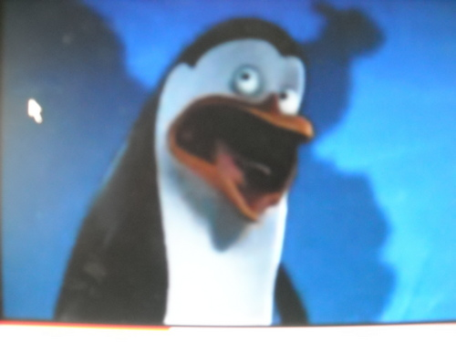 Kowalski screaming