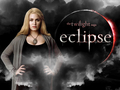 Rosalie Hale - emmett-rosalie-carlisle-and-edward wallpaper