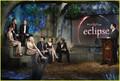 The Twilight Saga: Total Eclipse of the Heart - twilight-series photo
