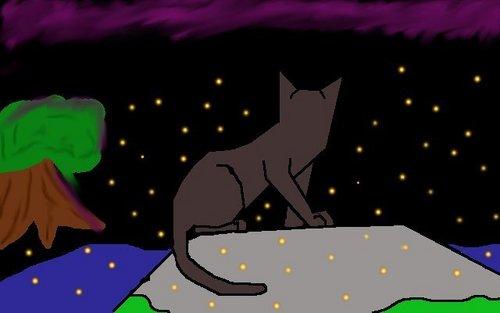 datk grey cat not Crowfeather!