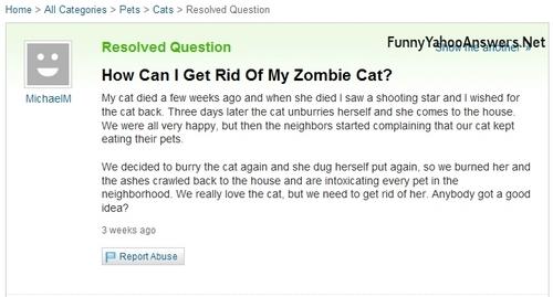 funny yahoo Ответы
