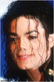 mj..... - michael-jackson photo