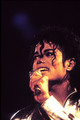 mj...... - michael-jackson photo
