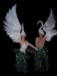 schwan costumes