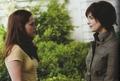 """Eclipse"" Movie Companion - twilight-series photo"
