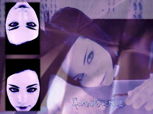 Amy Lee WP i've done