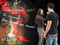 Bella punches Jacob - twilight-series photo