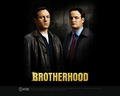 Brotherhood Wallpaper - jason-isaacs wallpaper