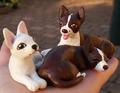 Chihuahuas - chihuahuas fan art