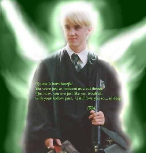 Draco WP oleh me