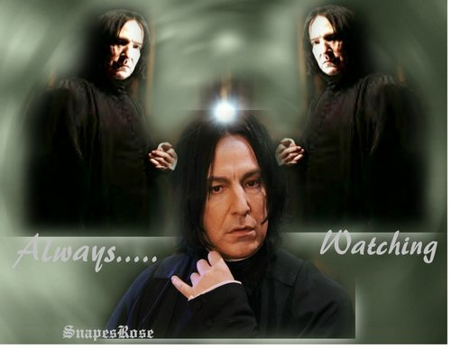 Severus- Always Watching