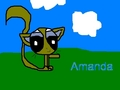 Amanda, the cat
