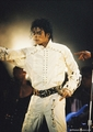 Bad Tour - Working Day & Night - michael-jackson photo