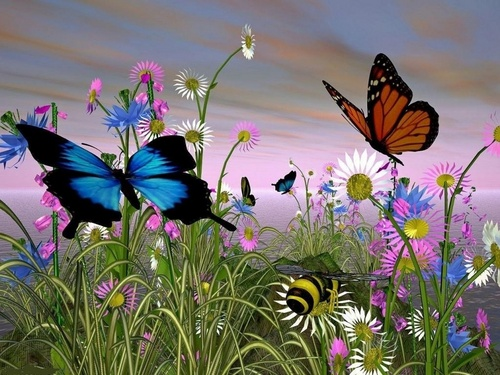 Butterflies wallpaper entitled In The Meadow