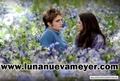 Eclipse stills - twilight-saga-movies photo